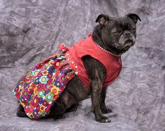 Daphne's Fancy dress