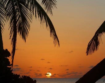 Paradise/canvas/photo/prints/gift card/sunset photography/palm tree
