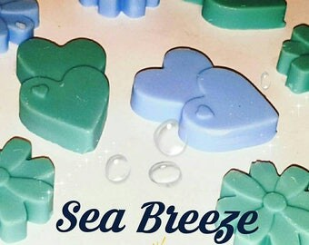 Wax melts with a sea breeze fragrance. Highly scented. Soy wax.