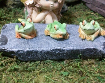 Set of 3 Frogs terrariums or table top decoration