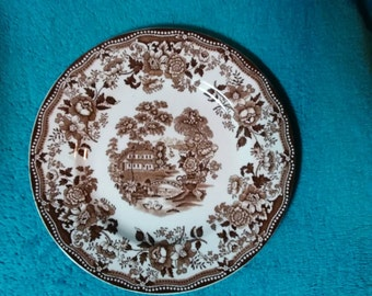 Old Willow Tonquin Alfred Meakin Staffordshire England Plate