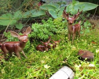 Vintage NOS Hagen ~ Renaker ~ Deer Family with newborn Twins ~  Fairy Garden Collectibles ~ Miniatures