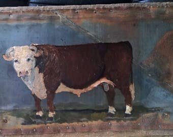 Hereford bull on metal and wood
