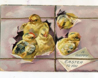 Happy Easter  Vintage Postcard  Chicks break out of  package - Embossed, Tuck and Sons vintage postcard, SharonFosterVintage