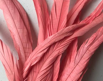 COQUE TAIL Feathers / Flamingo Pink / 217