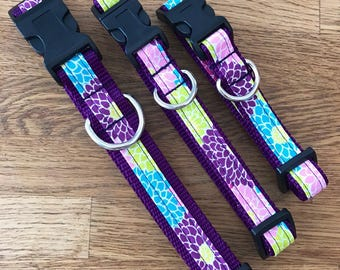 Dailiah Delite Dog Collar, Deep purple dog collar, Bright Floral Dog Collar, Leashes, Key Fobs, Friendship Bracelets and More