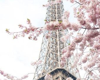 Paris Photography, April in Paris, Pretty in Pink, Paris in the Springtime, Pink Cherry Blossoms Eiffel Tower, Paris Home Decor