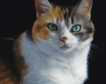 Calico Cat -  Blank Card of Original Oil Painting by Nancy Cuevas