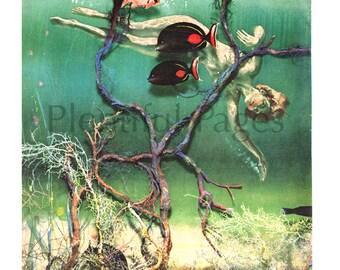 1950's Vintage Magazine Illustration, Lady Underwater, Magazine Art, Retro Illustration, Fish Swimming, 1950's Illustration, Great to Frame.