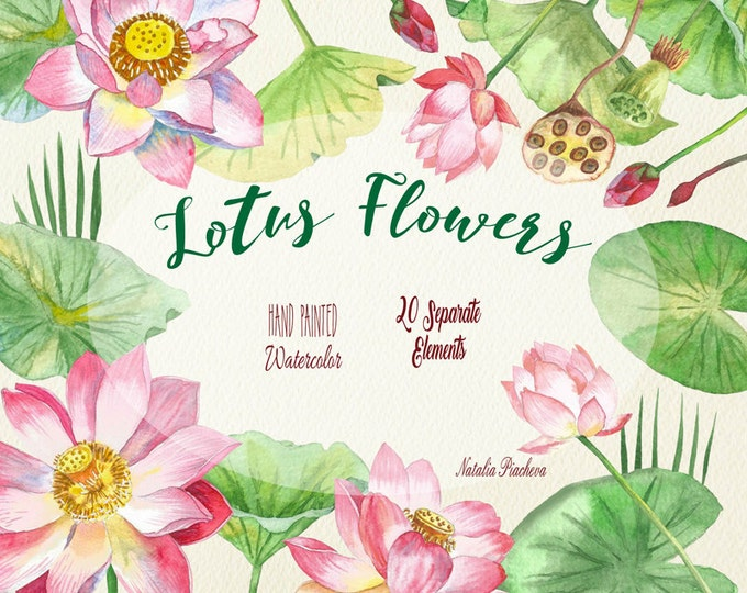 Lotus Flowers. Watercolor clip art, clipart, lotus, wedding, hand drawing, watercolor, blossom, nature, botanical, pink, oriental, spa,