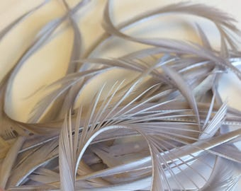 20 Pieces Premium Light Gray Biot Goose Feathers Great for Crafts