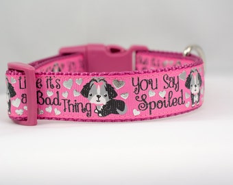 Girl Dog Collar - 1 inch wide - buckle or martingale collar - valentines day dog collar - hearts dog collar - girly dog - spoiled dog collar