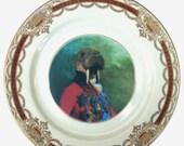 """ON SALE Sir Odobenus Rosmarus Portrait Plate 7.75"""""""