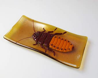 Giant Madagascar Hissing Cockroach Fused Glass Plate