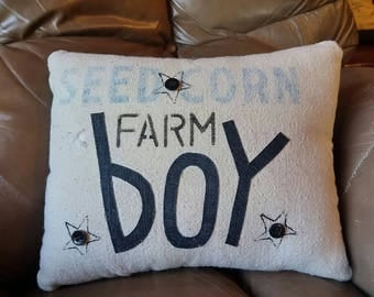Farm Boy accent pillow from vintage canvas