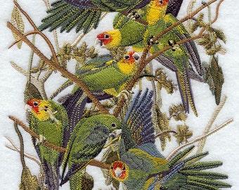 Carolina Parakeets Quilt Block