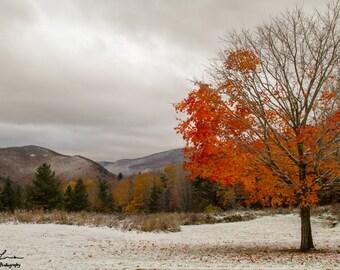 Half Winter and Half Fall Print