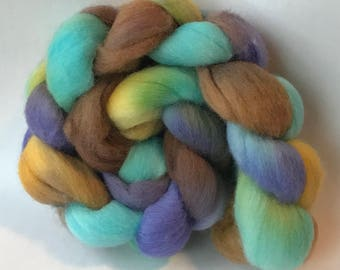 Polwarth wool spinning top Two of a kind, roving