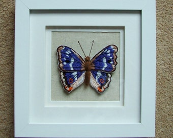 Embroidery of Purple Emperor butterfly, Apatura iris. Stitched in style of butterfly specimen.