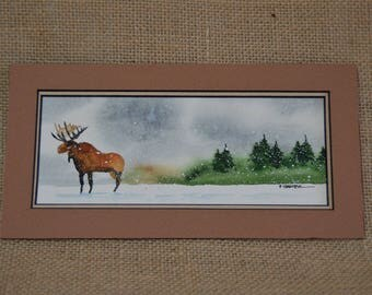 Moose in a Pine Tree Thicket 4x8 (Unframed)