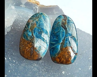 reserved for Anna Petrified Wood Opal Cabochon Pair,32x17x5mm,9.8g
