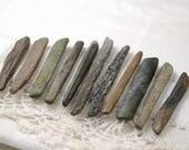 "11 thin fossil bone sticks (1.75"" - 2.5"") (no.8)"