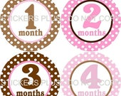 SALE Baby Month Stickers Plus Free Gift Monthly Milestone Age Stickers Pink Brown Dots Circles 1-12 Months Photo Prop Monthly PRECUT Sticker