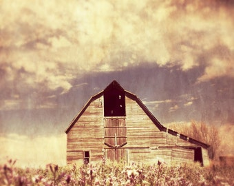 Spring Barn Picture / Barn Art / Framed Print / Greeting Card / Barnwood / Cottage Chic / Barn Salvage