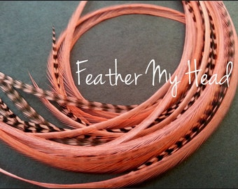 Feather Hair Extensions 9 - 12 Inches Long (23-30cm) Thin Fashion Euro - Grizzly Stripe And Solid Mix - 10 Pc Coral Pink