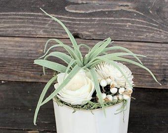 Artificial Air Plant Succulent arrangement, centerpiece, modern white ceramic vase, home decor, sola flowers, house warming, wedding