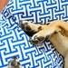 Pet Bed-Floor Pillow-Floor Pillow Cover-Dog Bed-Dog Bed Pillow-Large Dog Bed-Blue Dog Bed-Handmade Dog Bed-Modern Dog Bed-Blue Dog Bed
