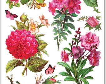Fuchsia Roses Stickers for Crafting-2 sheets