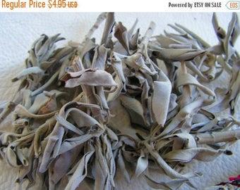 ON SALE 10 percent off White Sage, loose sage, smudge, smudging herb
