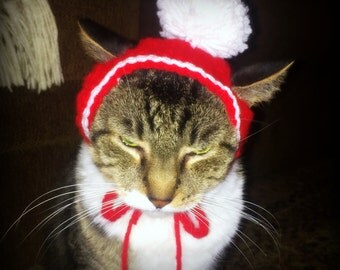 Ho Ho HOLIDAY Cat Hat
