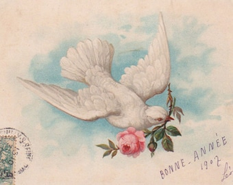 White New Year Dove With A Rose In Her Beak Original Antique Postcard