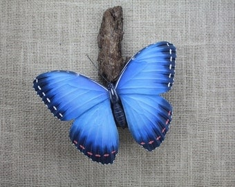 Blue Morpho Butterfly Wood Carving, Hand Carved, Wood Sculpture, Wall Sculpture, Wall Hanging, Woodcarving