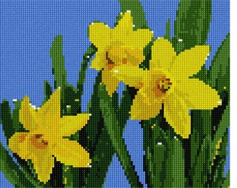 Needlepoint Kit or Canvas: Daffodils