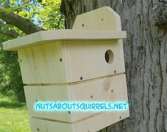 Southern Flying Squirrel House