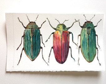 Three Bugs watercolour painting, Beetles illustration, Insect wall art, Beetle Artwork, Bugs painting, Nature Art, Garden lover gift