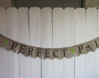 Perfect Pair Twins Banner - A Perfect Pair Baby Shower Decoration - Twins Bunting - Twins Garland - Unique Anniversary Photo Prop Sign