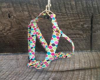 Lollipop step in harness