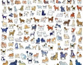 All AKC dog breeds poster