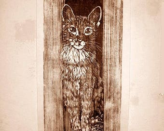 Life size Cat Print, Printmaking , Handpulled Woodblock Tabby Cat Art, Printed with Brown Ink