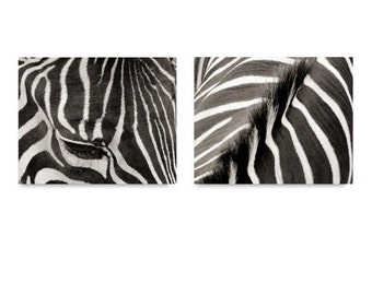 Set of 2 Zebra Photographs - Zebra Art Print - Stripy Zebra - Zebra Pattern Art - Wall Decor - Animal Photograph