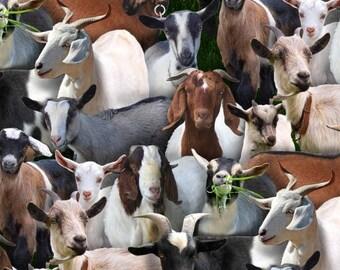 Goat, Pig, & Cow Cotton Fabric by Elizabeth's Studio! [Choose Your Cut Size]