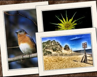 3 Nature Photo Greeting Card Set - 5x7 Nature Note Card - Blank Note Cards Handmade - Photo Greeting Cards Handmade (NA14)