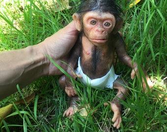 mini baby scimpanzè