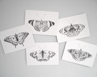 Set of 10 butterfly postcards