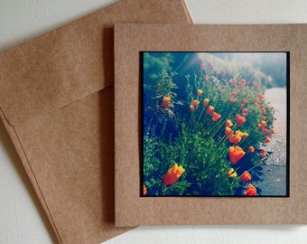 Good Morning Poppies - Original Photography Greeting Card
