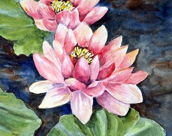 PINK WATERLILY - Original Watercolor